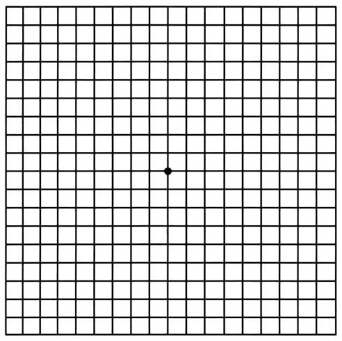 Amslers Grid